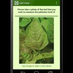 leafscreen