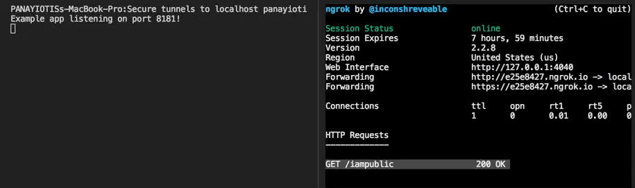 How to expose local development server to the world – Panayiotis